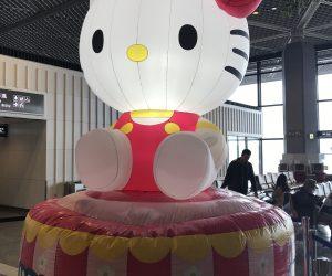 【サムイ島&パンガン島旅行記】S3 E01 成田発 タイ航空 TG641便に乗る方法