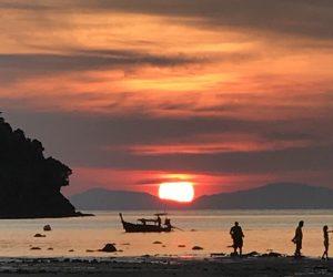 【プーケット島&ピピ島旅行記】S4 E18 ピピ島(ネコ島)探索 夜の部