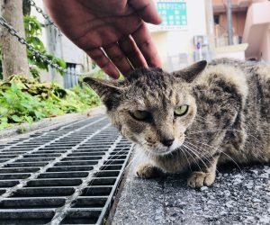 【沖縄旅行記】S3 EP07 那覇のお風呂屋さん♨