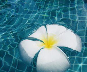 【サムイ島旅行記】S5 E06 アマリ コ サムイのプールとビーチで水遊び