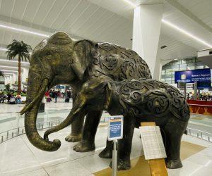 【インド旅行記】EP22 ゴア空港から成田空港へ